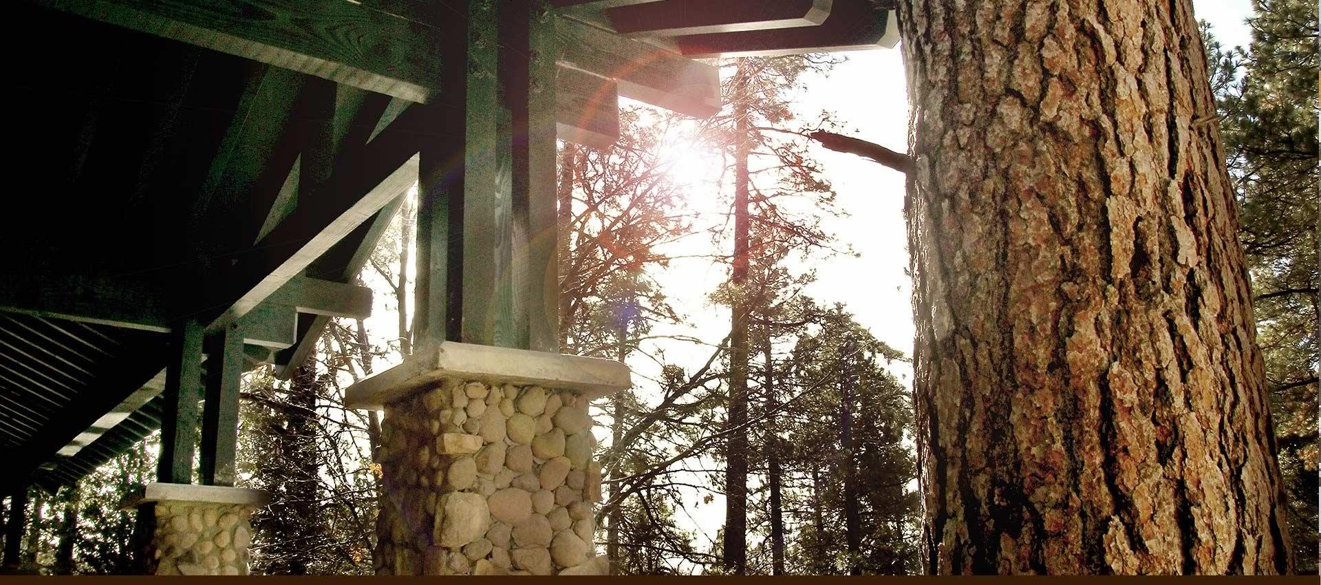 Grand-Idyllwild-deck-sun